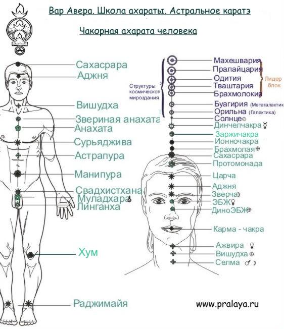 uprazhneniya-dlya-seksualnoy-chakri